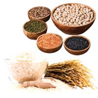 Rice & Dals